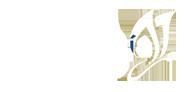 logo alfa web